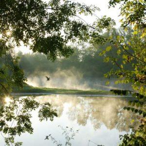 Cours photo dans la Loire (42)